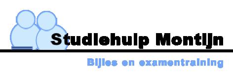 Studiehulp Montijn, voor huiswerkbegeleiding en bijles.